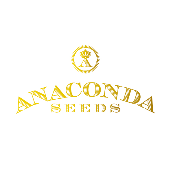 Anaconda Seeds