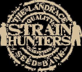 Strain Hunters Seed Bank